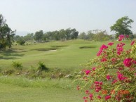 Greenwood Golf & Resort - Green