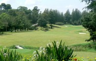Forest Hills Country Club (Sir James) - Fairway