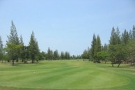 Vintage Golf Club - Fairway