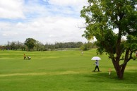 Lao Country Club - Green