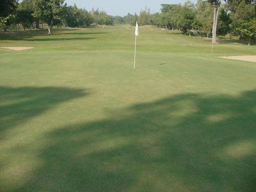 Lanna Golf Club Photos