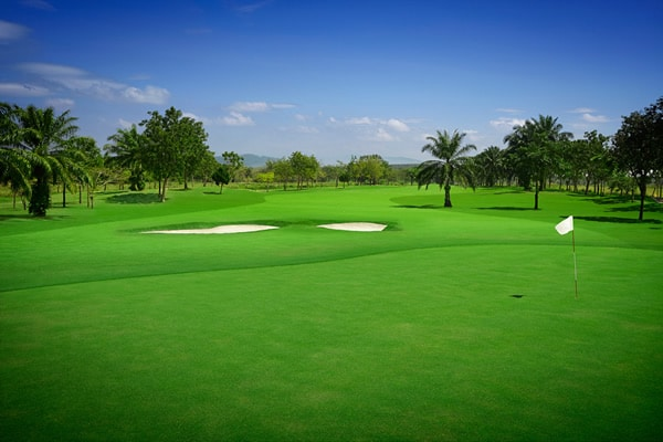 Pattaya Country Club Photos