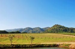 Khao Yai Golf Resort Package