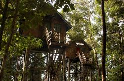 Permai Rainforest Resort