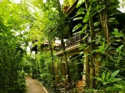 Rabbit Resort Pattaya
