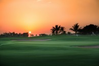 Abu Dhabi Golf Club - Green