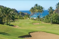 Aquella Golf Resort and Country Club - Green