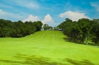 Ayer Keroh Country Club - Fairway