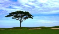 Borneo Golf & Country Club - Green