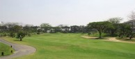 Ciputra Golf Club & Hotel Surabaya  - Green