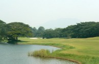 Clearwater Sanctuary Golf Resort - Green