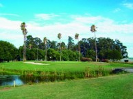 Heron Lake Golf Course & Resort - Green