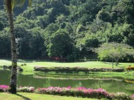 Nexus Golf Resort Karambunai - Green
