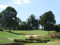 Palm Resort Golf & Country Club - Green