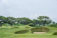 Pun Hlaing Golf Links - Green