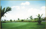 Royal Cambodia Phnom Penh Golf Club - Green