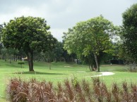 Treasure Hill Golf & Country Club - Fairway