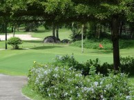 Treasure Hill Golf & Country Club - Green