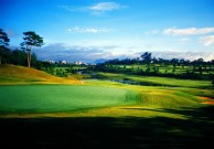 Dalat Palace Golf Club - Green